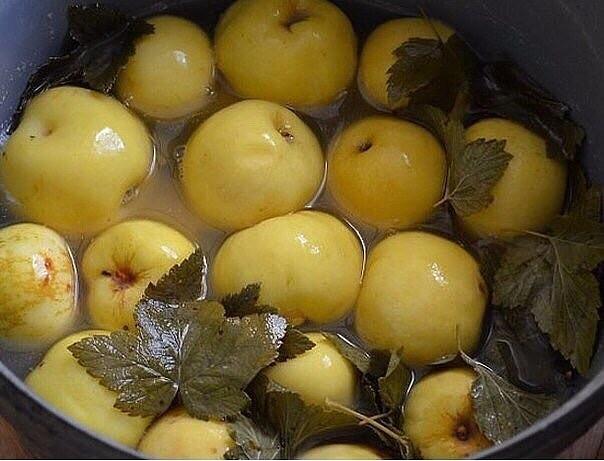 Моченые яблоки - суперзакуска! Самые лучшие рецепты!