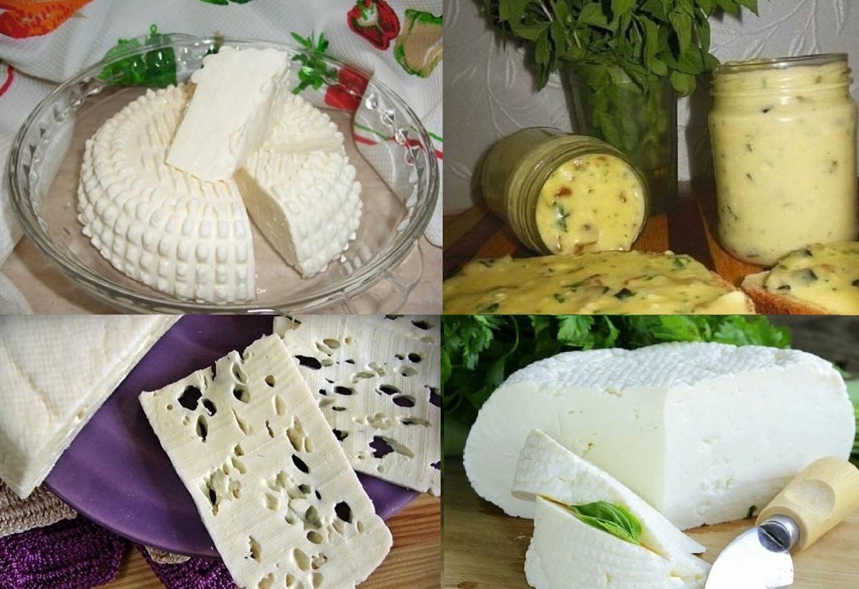 рецепт домашнего сыра с фото время сажают его