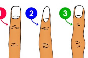 Форма среднего пальца может многое рассказать про ваш непростой характер
