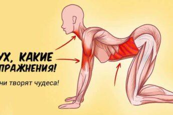 7 упражнений которые творят чудеса с женским организмом.