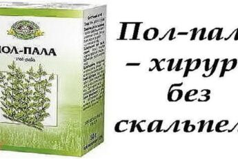 Пол-пала — чудо трава! Узнайте, почему она так полезна