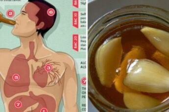 Если вы употребляете чеснок с медом на пустой желудок в течение 7 дней, вот, что происходит с вашим организмом…