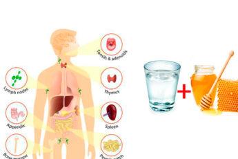Медовая вода: Что лечит и как принимать?