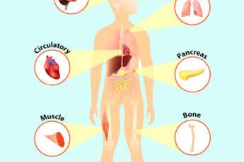 Как организм «кричит» о помощи: признаки дефицита минералов и витаминов