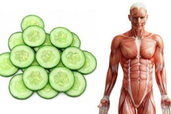Начните каждый день употреблять огурцы , и через месяц Вы заметите большие изменения в теле!