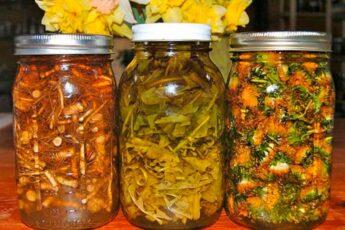 Спиртовые НАСТОЙКИ из корней, листьев и цветков одуванчика — очень ЦЕЛЕБНОЕ лекарство на весь год!
