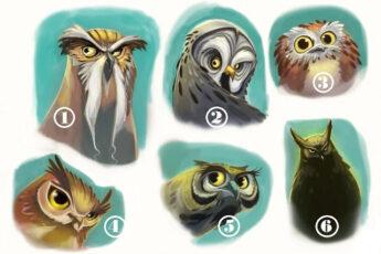 Выберите одну сову и прислушайтесь к ее мудрому совету