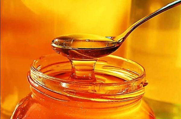 Что лечит мед с прополисом: целебная смесь от 100 болезней!